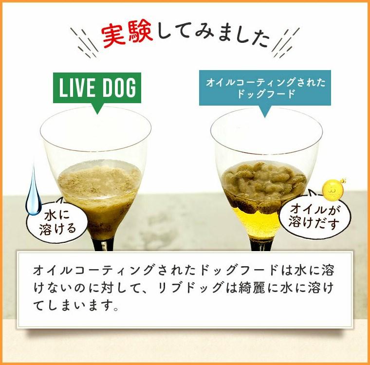 リブドッグを水に溶かす実験